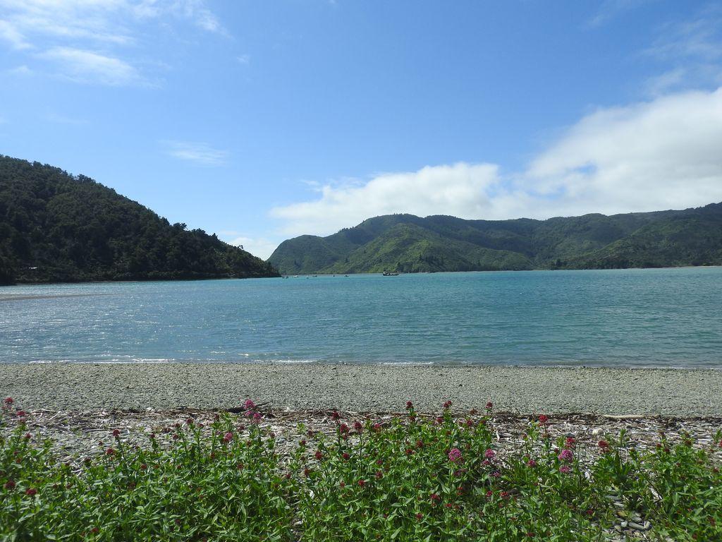 La baie Okiwi