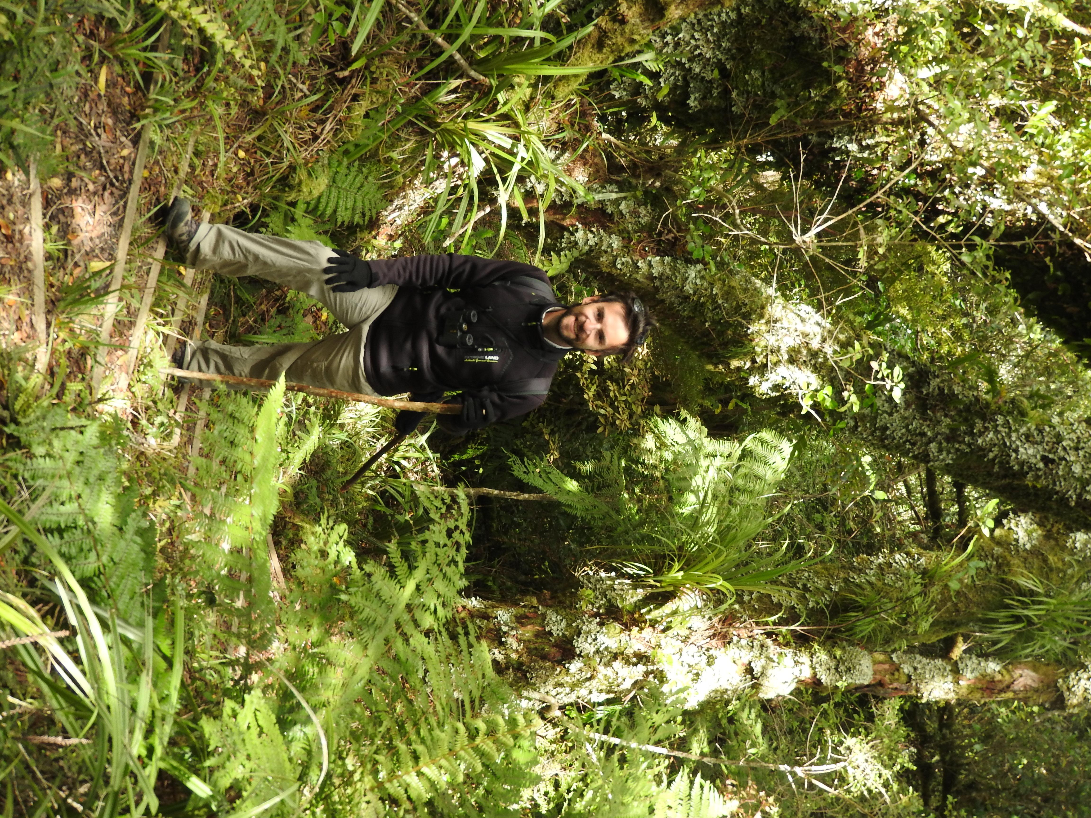 En route pour la montée dans les bois